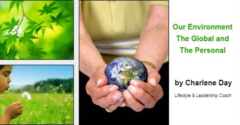 Our Environment - The Global and the Personal - by Charlene Day