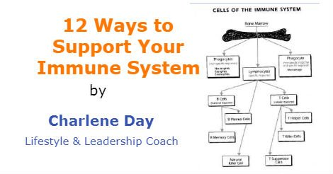 how to support your immune system